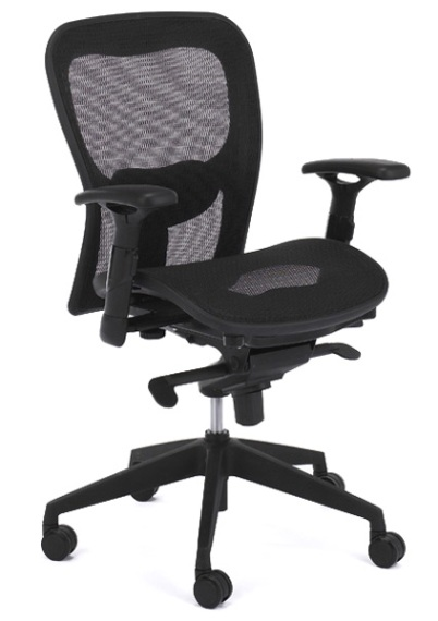 Ergo CEO Low Back Office Chair